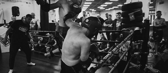 Charytatywny Turniej Muay Thai – Gorila Cup X!